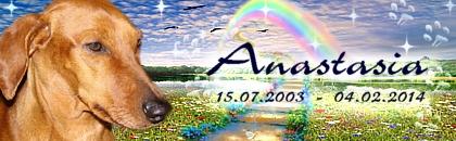 http://regenbogen7.bplaced.net/Regenbogenbr%fccke/Anastasia%2002.jpg