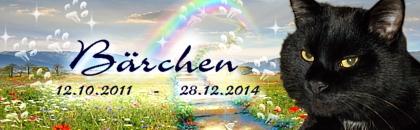 http://regenbogen7.bplaced.net/Regenbogenbr%fccke/Baerchen002.jpg