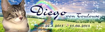 http://regenbogen7.bplaced.net/Regenbogenbr%fccke/Diego%20von%20Toulouse%2002.jpg
