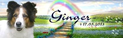 http://regenbogen7.bplaced.net/Regenbogenbr%fccke/Ginger02.jpg