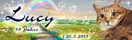 http://regenbogen7.bplaced.net/Regenbogenbr%fccke/Lucy002.jpg