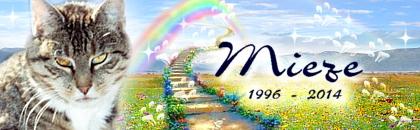 http://regenbogen7.bplaced.net/Regenbogenbr%fccke/Mieze02.jpg