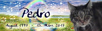 http://regenbogen7.bplaced.net/Regenbogenbr%fccke/Pedro01.jpg