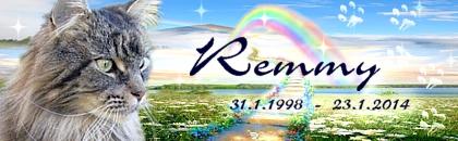 http://regenbogen7.bplaced.net/Regenbogenbr%fccke/Remmy%2002.jpg