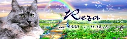 http://regenbogen7.bplaced.net/Regenbogenbr%fccke/Reza%2002.jpg